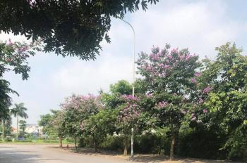 Cực hot, chỉ 45tr/m2 sở hữu đất KĐT 31ha Trâu Qùy, Gia Lâm 129m2 trung tâm Huyện, đường 13m vỉa hè