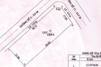Bán nền biệt thự góc 2 mặt tiền đường Phạm Công Trứ và Đ. Nguyễn Hữu Cầu (Cồn Khương)