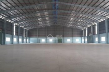 Cần cho thuê kho 5500m2 trong KCN Tân Tạo, PCCC tự động. Kho mới xây theo tiêu chuẩn mới nhất