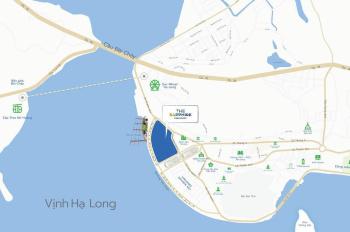 Nên đầu tư condotel nào đẹp nhất, tốt nhất, an toàn nhất, lợi nhuận nhất tại Việt Nam