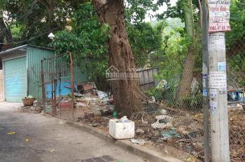 Bán đất hẻm 666 Trần Phú Phường 6 diện tích 4685 m2 đất 3 mặt tiền hẻm thuận tiện phân lô