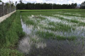 Bán đất công huyện Đức Hòa giá rẻ, 1100m2, giá 2 tỷ 799 triệu xã Đức Hòa Đông