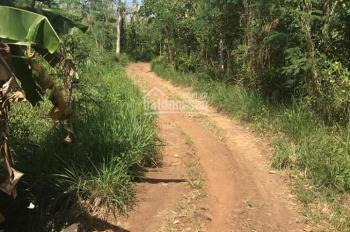 Cần bán mảnh đất 2.2ha xã Xuân Tây, huyện Cẩm Mỹ, tỉnh Đồng Nai