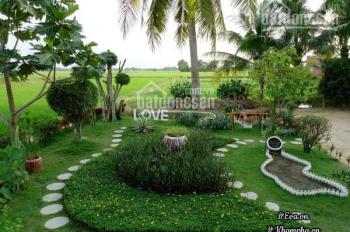 Chuyển nhượng nền đất cho khách an cư tại P Phú Hữu Quận 9 giá 2.35 tỷ/ 55m2 LH 0902966926
