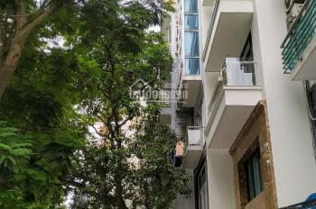 Nhà 10 tầng mặt phố Trúc Bạch, mt 8m, 210m2, chỉ 93 tỷ, view hồ, ks, vp. Lh 0917420066