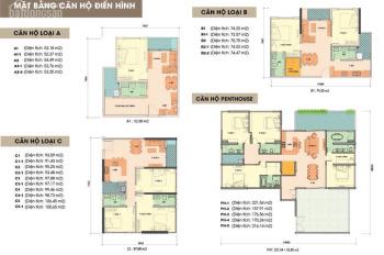 CĐT Gamuda mở bán toà chung cư The Zen đợt cuối giá gốc ưu đãi lớn 1,6 tỷ, LH 0975689786