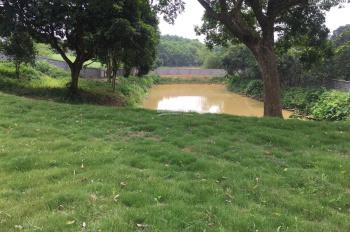 Bán gấp 1700m2 đất sổ đỏ chính chủ tại hồ Đồng Quýt, xã Hòa Sơn, Lương Sơn, Hòa Bình