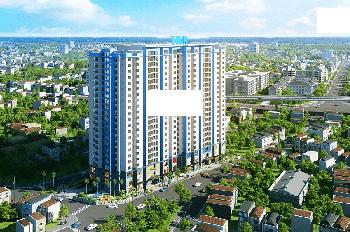 Nhiều khách hàng ở Times City rất hài lòng khi mua chung cư Amber tại 622 Minh Khai