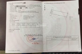 Bán 60m2 đất Quỳnh Cư, Hùng Vương, Hồng Bàng. Giá 430tr