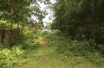 Cần bán 7000m2, đất thổ cư Phú Mãn, Quốc Oai, HN