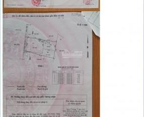 Bán nhà đất khu vực Nhà Bè với nhiều diện tích khác nhau giá từ 1 đến 100 tỷ, LH: 0933334829