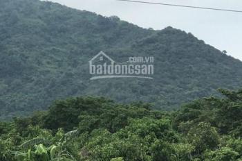 Bán 7 ha đất tại xã Suối Cát, huyện Xuân Lộc, tỉnh Đồng Nai