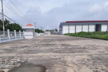 Cho thuê xưởng diện tích 5000 - 10000m2 tại KCN Tân Phú Trung - Củ Chi