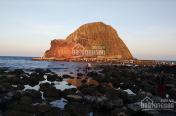 9500m2 đất mặt biển gần thắng cảnh Hoàn Yến, Tỉnh Phú Yên
