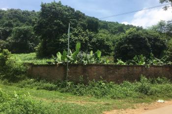 Bán 2100m2 đất ở giá rẻ, mặt đường nhựa áp phan sát đền Thượng, Long Việt, xã Vân Hòa, Ba Vì, HN