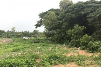 Bán đất khu Minh Linh, giá đầu tư, lộ nhựa 12m, 100m2, giá 800tr. LH Chính chủ 0938552892
