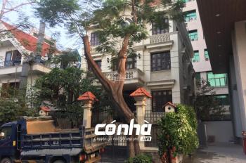 Cho thuê biệt thự đường Phan Đình Giót, phường 2, quận Tân Bình. 12x25m hầm trệt 2,5 lầu