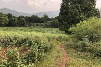 Cần bán lô đất 1.5ha giá rẻ 380k 1 mét