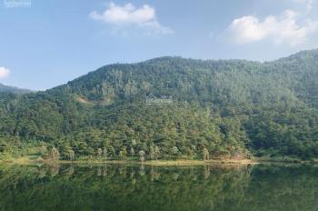 Chính chủ bán đất mặt hồ Đồng Đò, Sóc Sơn, vuông vắn 7393 m2, giá 3,975 tỷ. Liên hệ: 0915.343.901
