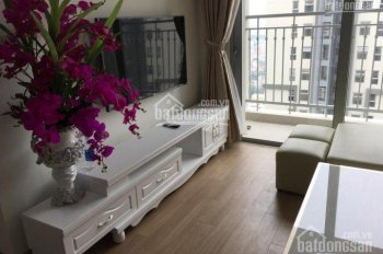 Cho thuê căn hộ Vinhome D'Capitale giá đồ cơ bản và full đồ giá từ 12 triệu/th. LH 0981.808.979