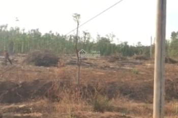 Cần bán đất chính chủ Xuân Lộc, Đồng Nai, DT 1868m2, SHR, giá 480 triệu, LH: 0839161968