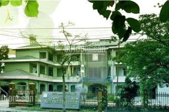 TP Vĩnh Yên - Vĩnh Phúc: Cho thuê DT làm văn phòng, kinh doanh, dịch vụ: (0913284196)