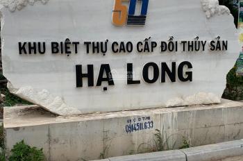 Bán mảnh đất vàng 375m2 Biệt thự Đồi Thủy Sản TP Hạ Long, Quảng Ninh