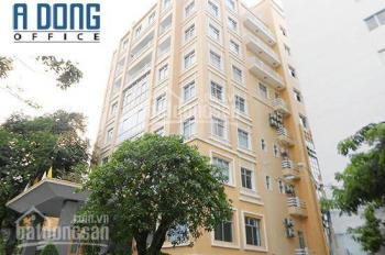 Cho thuê văn phòng Building Đinh Tiên Hoàng, p Bến Nghé, quận 1 - DT: 60m2 - Giá: 20,5 triệu/tháng