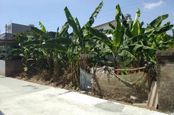 Bán đất tại Tân Trại, xã Phú Cường, huyện Sóc Sơn, Hà Nội, gần sân bay nội bài liên hệ 0584621824