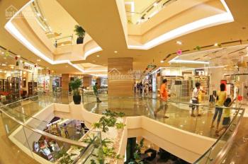 Cắt lỗ chung cư D'capitale Trần Duy Hưng 112m2, giá 4,5 tỷ