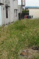 Chuyển nhà cần bán lô đất Uyên Hưng giáp P. Hội Nghĩa