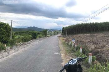 bán nhanh lô đất 15.000m mặt tiền đường Diên Tân, Diên Khánh
