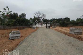 Bán đất thôn 1 Tân Xã, Giáp trường Đại học FPT, Văn Lang dt 110m2, giá 800 tr, đường nhựa 6m