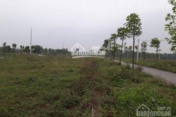 Bán đất tân xã diện tích 100m gần đường vành đai CNC hòa lạc thạch thất, giá 5triêu/m LH 0946924026