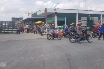 Thanh lý nhanh 9 lô full thổ cư SHR ngay MT Quốc lộ 13, ngay khu vip Mỹ Phước, bán nhanh chỉ 500tr