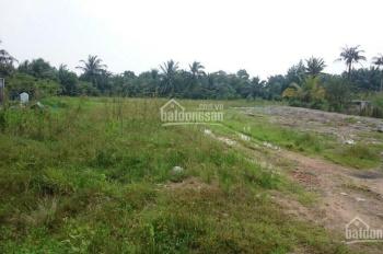 Bán đất mặt tiền đường Long Phước, phường Long Phước, cách cầu Long Đại 900m, diện tích lớn nhỏ