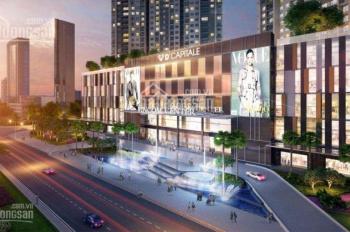 Chuyên cho thuê căn hộ D'Capitale Trần Duy Hưng từ 2 - 3PN, giá tốt nhất thị trường. LH 0915351365