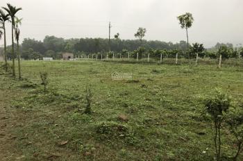 Bán gấp trang trại giáo dục tại huyện Lương Sơn, tỉnh Hòa Bình