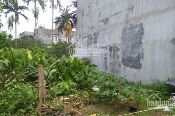 Cần bán gấp lô đất 880 triệu tại Quỳnh Cư  Hùng Vương , Hp