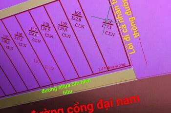 Chính chủ bán gấp đất Hiệp An DT 177.1m2-Giá 1 tỷ 550tr. Giáp chủ Lh 0966770989 Khang