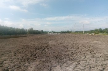 đất khủng,đường quốc phòng xã an thới đông huyện cần giờ