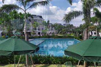 Cần cho thuê lại căn A3 - 11 và A3 - 24 dự án Long Phú Villa, Bến Lức
