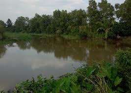 Chính chủ bán đất khu biệt thự vườn bờ Sông Lu, Củ Chi, liên hệ: 0784139688