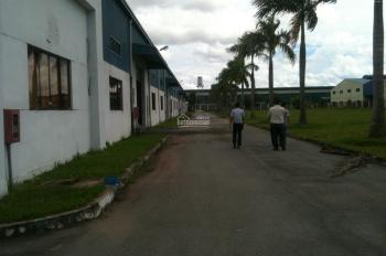 Cho thuê gấp nhà xưởng DT: 20.000m2 KCN Nam Tân Uyên, Bình Dương. LH: 0908.561.228