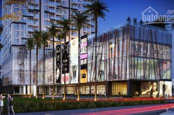 Cập nhật giỏ hàng dự án Ascent Plaza mới nhất giá phù hợp thị trường căn hộ Bình Thạnh 0933799114