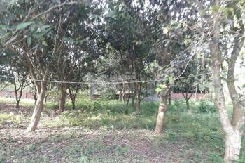 Cần sang nhượng gấp 19.440m2 đất, tại Thôn Bùi Trám, Hòa Sơn, Lương Sơn, Hòa Bình