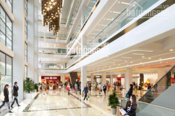 Mở bán shophouse khối đế ưu điểm chưa từng có tại Ciputra, HTLS 0%, kinh doanh cực tốt