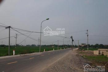 Cần bán lô đất đấu giá khu Điếm Tổng Thôn Quế Sơn Xã Tân Ước, Huyện Thanh Oai, mặt Tỉnh Lộ 429