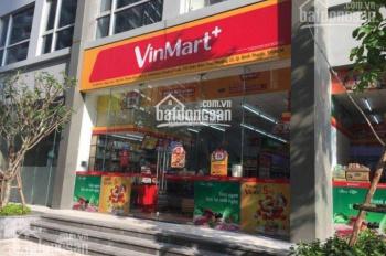 Chính chủ bán shophouse tòa Landmark 1, DT 238m2, đang có hợp đồng thuê giá cao 0977771919