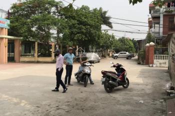 Bán đất kinh doanh Ngũ Hiệp, Thanh Trì, DT từ 40 - 300m2, giá từ 36 - 65tr/m2, đường trên 4m
